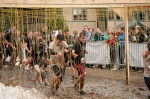tough_mudder_2011-55.jpg